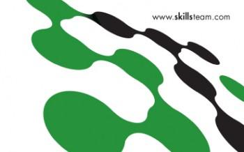skillsteam