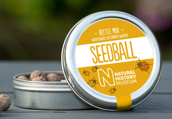 Seedball-Natural-History-Museum-beetleMix