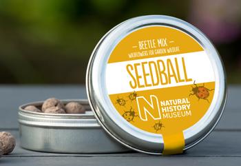 Seedball-Natural-History-Museum-beetleMix